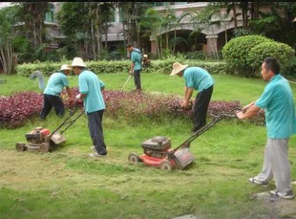 东莞园林绿化