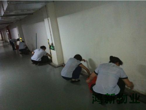 东莞专业办公室保洁的公司哪家好